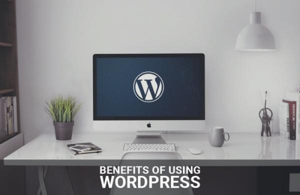 11 benefits of using WordPress pearl white media